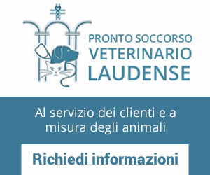 adv-pronto-soccorso-veterinario-laudense.jpg