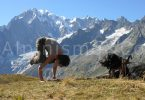 power-yoga-pro-climb