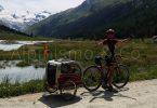 cover-viaggi-bicicletta-cane